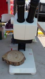 woodringsinscope