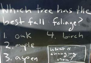 treefoliage